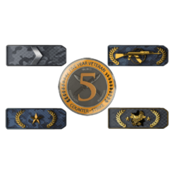 Ranked CSGO 5 Year Veteran Coin Accounts