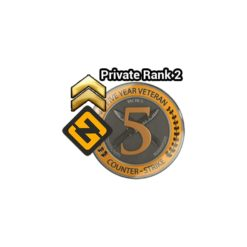 Buy Private rank 2 Account with 5 Year Veteran Coin Instant Delivery!