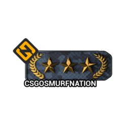 CSGO Gold Nova 3 (GN3) Ranked Smurf Account [Instant Delivery]