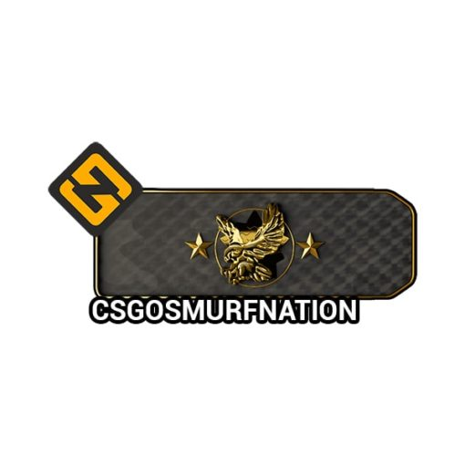 CSGO Legendary Eagle (LE) Ranked Smurf Account [Instant Delivery]