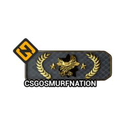 CSGO Legendary Eagle Master (LEM) Ranked Account [Instant Delivery]
