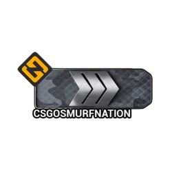 CS:GO Silver three (S3) Ranked Smurf Account [Instant Delivery]
