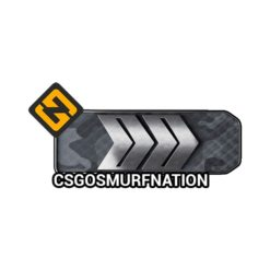 CS:GO Silver Four (S4) Ranked Smurf Account [Instant Delivery]